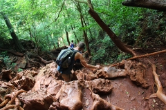 Auf dem Weg zur Grotte